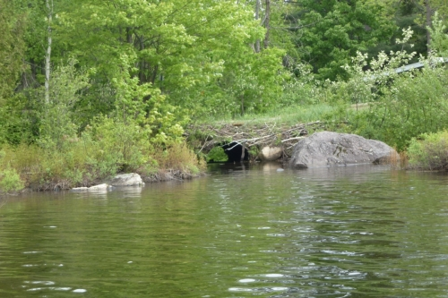 Zone 02 du lac Charlebois